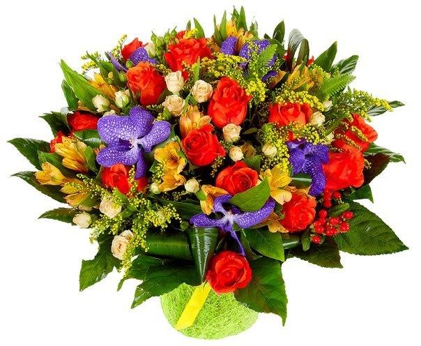 Доставка цветов по г.уфе цветы анимоны купить в спб