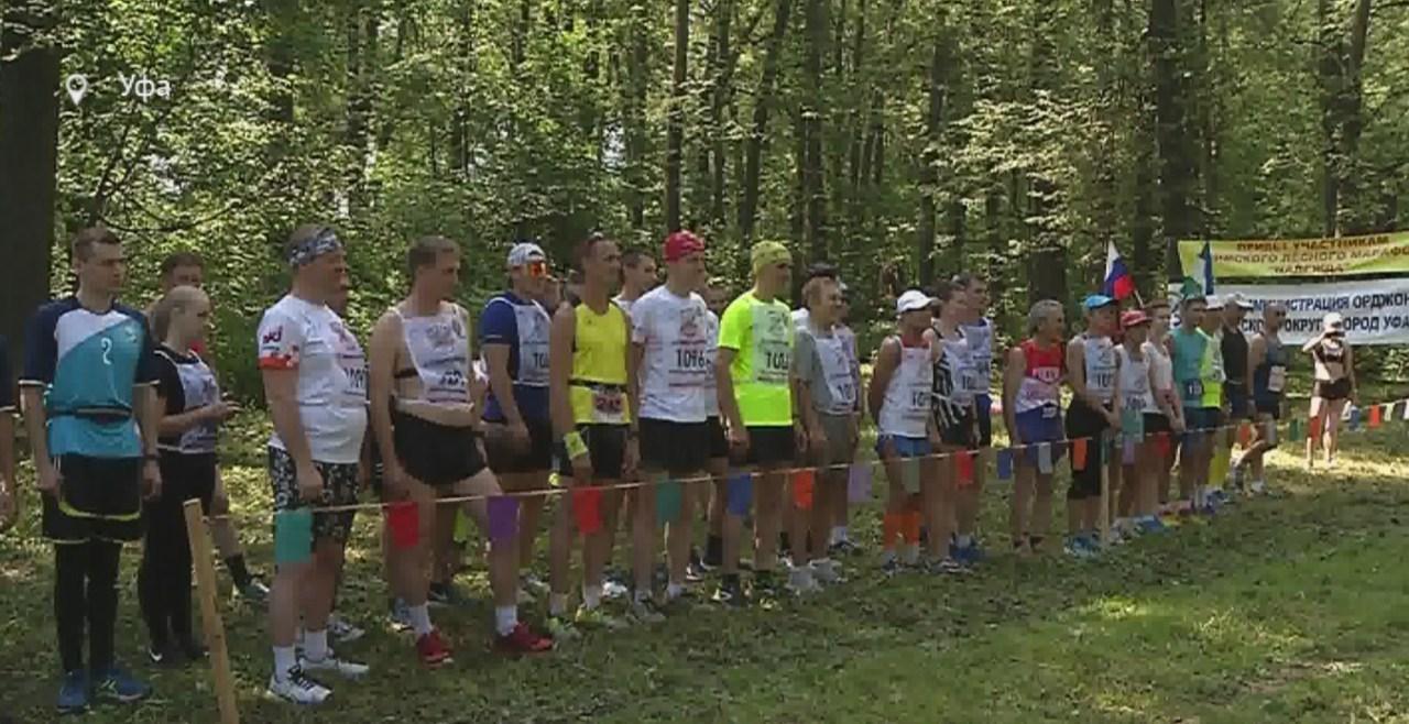 Лесной марафон