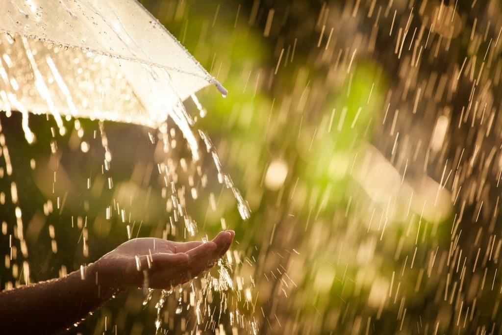 Сегодня в Курской области прогнозируют дожди, грозы и град