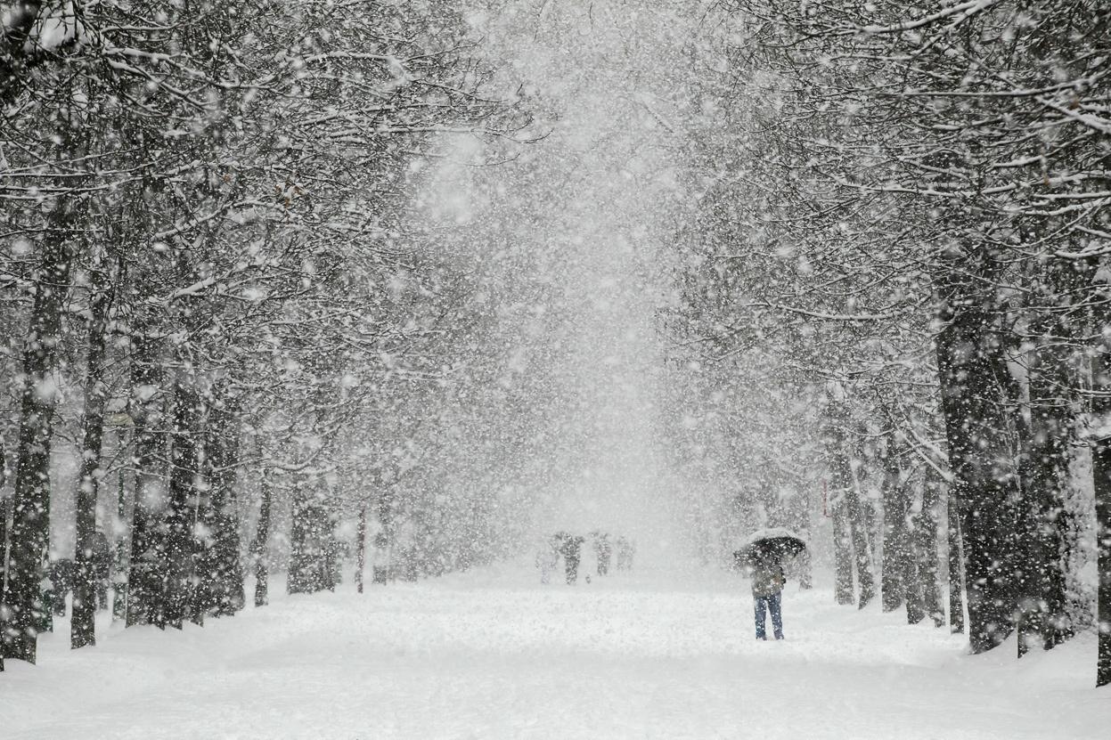 снегопад метель фото эффективным конкретный образ